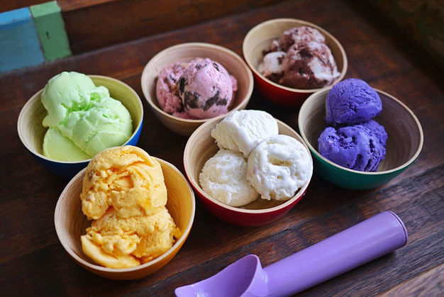 How to Obtain Selecta Ice Cream Franchise